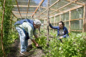 Potenciarán Agroecología en Ruta de los Parques de la Patagonia